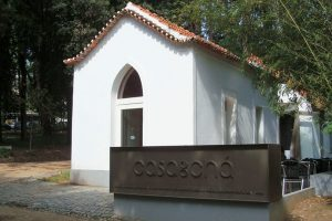 APPACDM de Coimbra promove aula gratuita de yoga